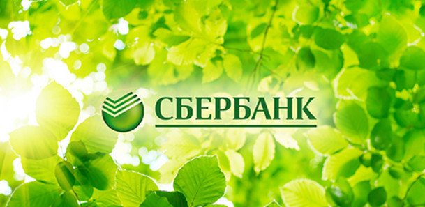 Зарплатный проект в Сбербанке: инструкция для бухгалтера, карта, тарифы