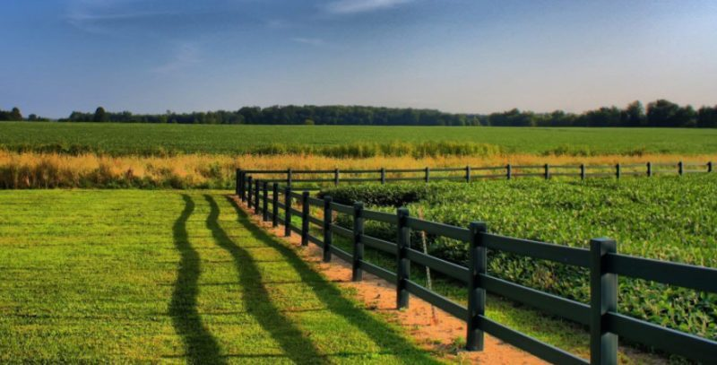 Как взять кредит под залог земельного участка без подтверждения доходов в Сбербанке, Россельхозбанке, ВТБ 24 и какие еще банки дают
